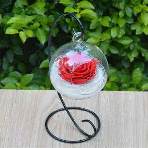 Clear Hanging Glass Ball Vase Flower Plant Pot Terrarium Container Decoration Decorative Hardware