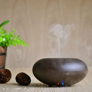 GX.Diffuser Ultrasonic Wood Grain Aroma Humidifier Negative Ion Purification Intelligent power off Atomizer